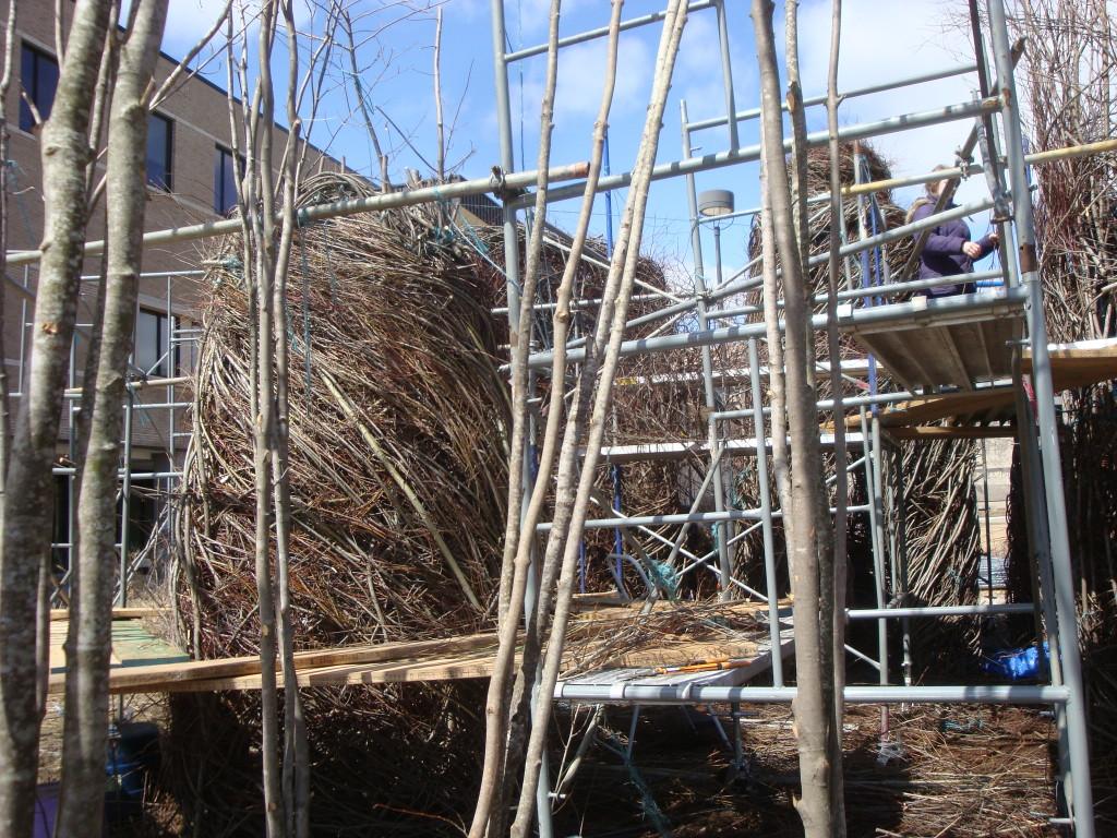Work in progress on Patrick Dougherty installation at UWSP.