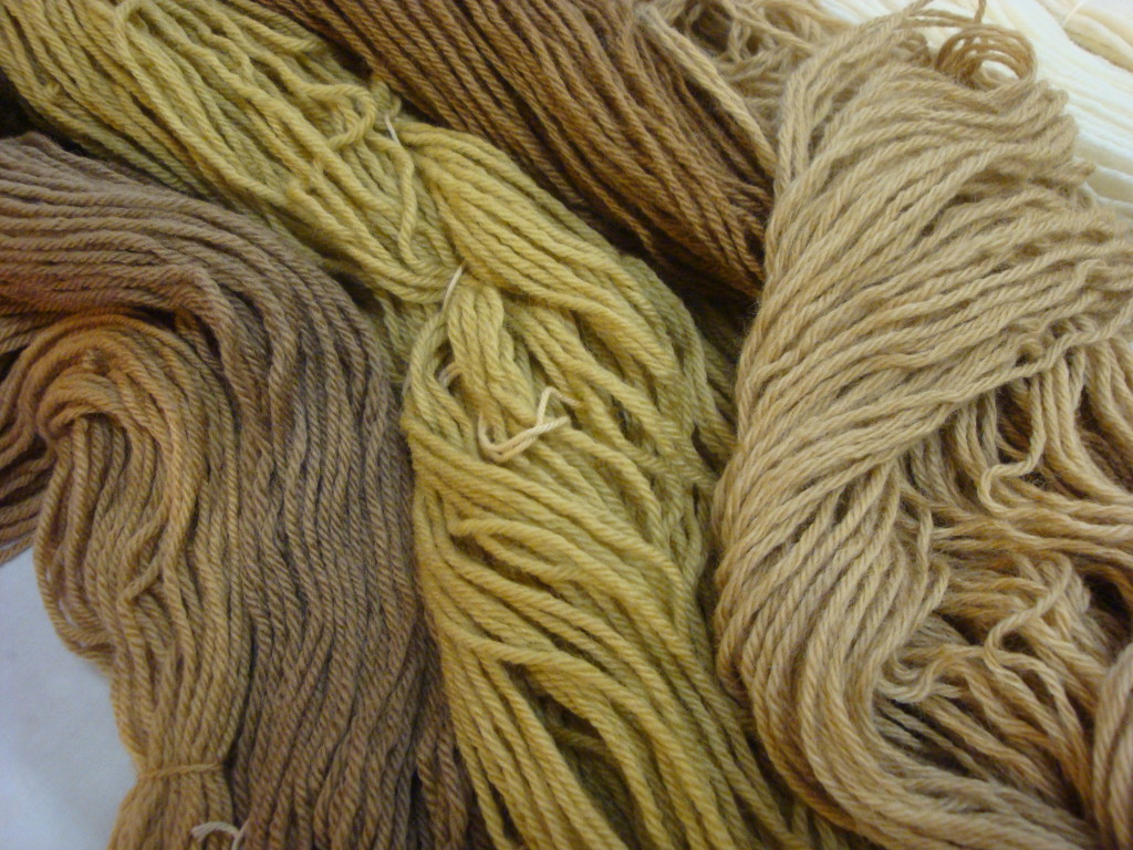 Plant-dyed wool yarns by Donna Kallner.