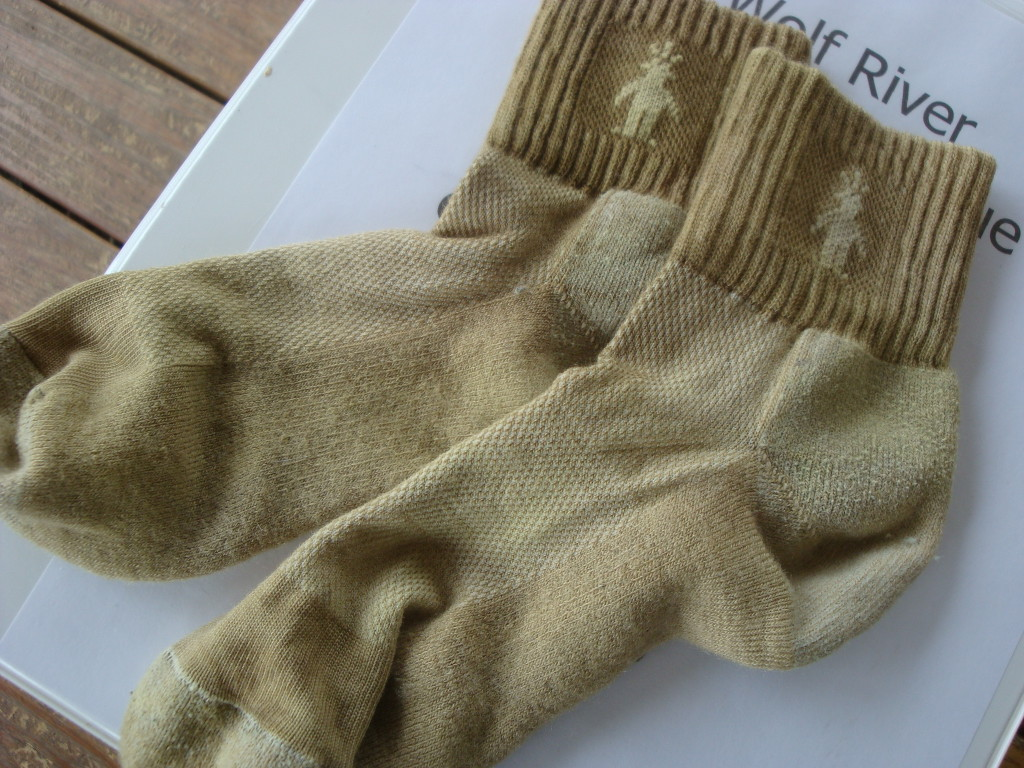 Wool socks dyed with bracken fern immersion bath by Donna Kallner.