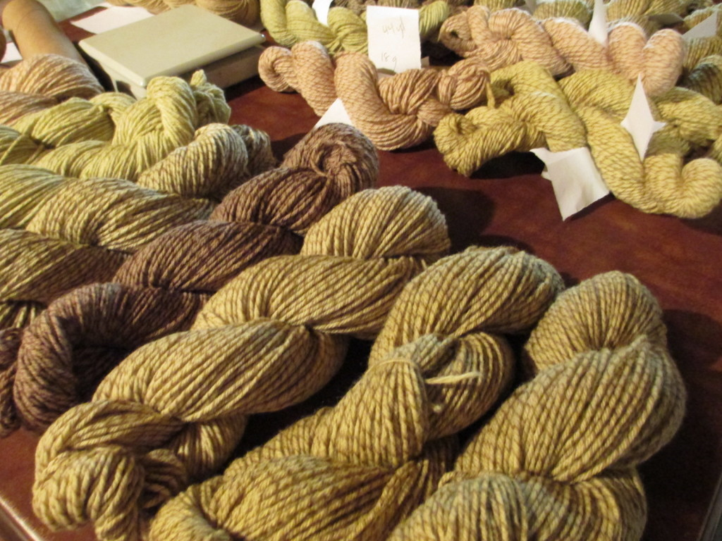 Skeins of yarn dyed by Donna Kallner with natural dyes gathered in northern Wisconsin.