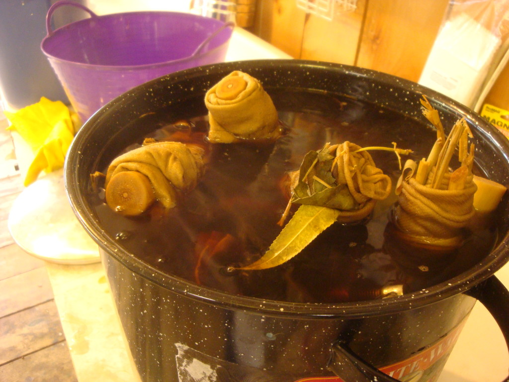 Bundles simmering in willow leaf dyebath.